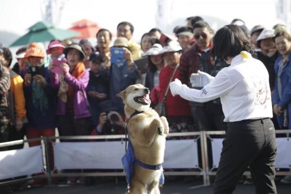 현대판 모세의 기적 진도 신비의 바닷길 축제 개막…19일까지 열려(자료사진)2.JPG