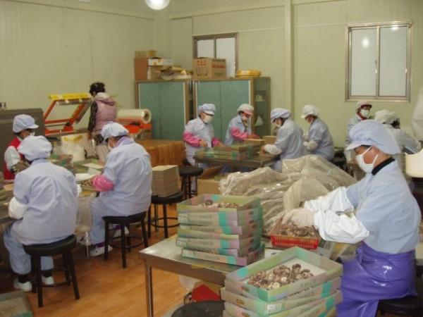 청년농업인 6차산업.JPG