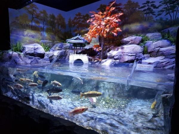 [크기변환]섬진강어류생태관.jpg