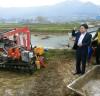 강진군, 연근 수확작업 한창 … 가공·유통 활기