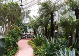 서울시, 발길 뜸했던 선유도공원 노후 온실 도심 속 작은 식물원으로 재탄생