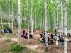 산림 일자리를 위한 2018 대한민국 산림문화박람회