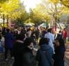 제6회 향동 마을축제「은행나무 아래로」열려