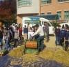 담양군, 서울시 학교에서 찾아가는 벼 수확체험