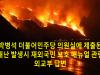 재난 발생시 재외국민 보호 매뉴얼 관련 외교부 답변