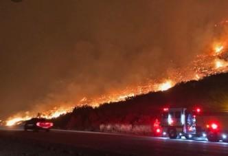 외교부, 캘리포니아 산불 피해자 페북 아이디 영사관에 전달 안해