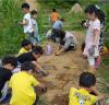 '초등학교 자투리텃밭 사업' 공모