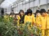 산림조합 전국 125곳 나무시장 운영