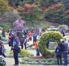 제11회 청남대 가을'국화축제'성황 중 단풍의 화려함, 국향의 설레임
