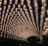 제18회 영광불갑산상사화축제 소원燈(등) 달기 신청하세요!