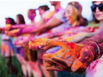 곡성세계장미축제에서 花려한 色에 물들어 볼까?