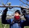 청년농업인 엄창규씨, 6차산업 비전 품다