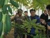 이승옥 강진군수, 아열대 과수 농업인과 현장소통